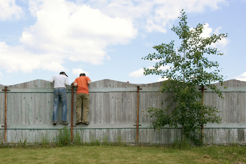 fence line survey - lot survey